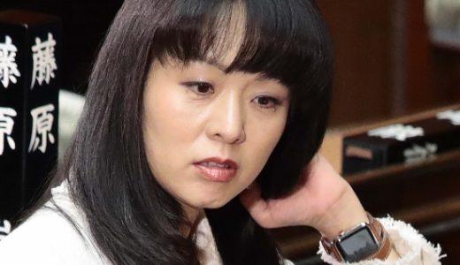 【動画】夫婦別姓にヤジを飛ばした杉田水脈議員にやっぱりの声が多い理由は?